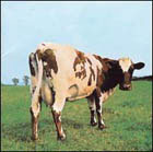 Pink Floyd:Atom Heart Mother