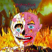 Melting Flesh:Songs For The Fisted