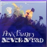 Pink Fairies: Never Neverland
