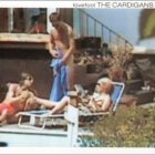 Cardigans:Lovefool
